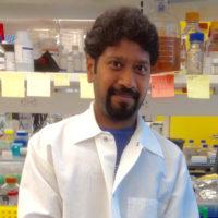 Nagendran Ramalingam, PhD